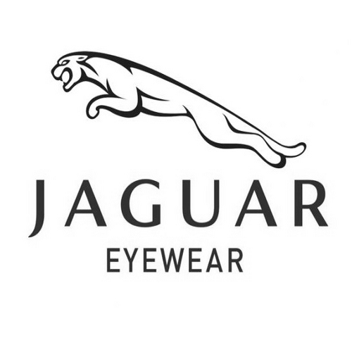 Mouans Optique-lunettes hommes Jaguar